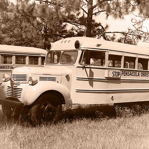 66-Passenger School Bus